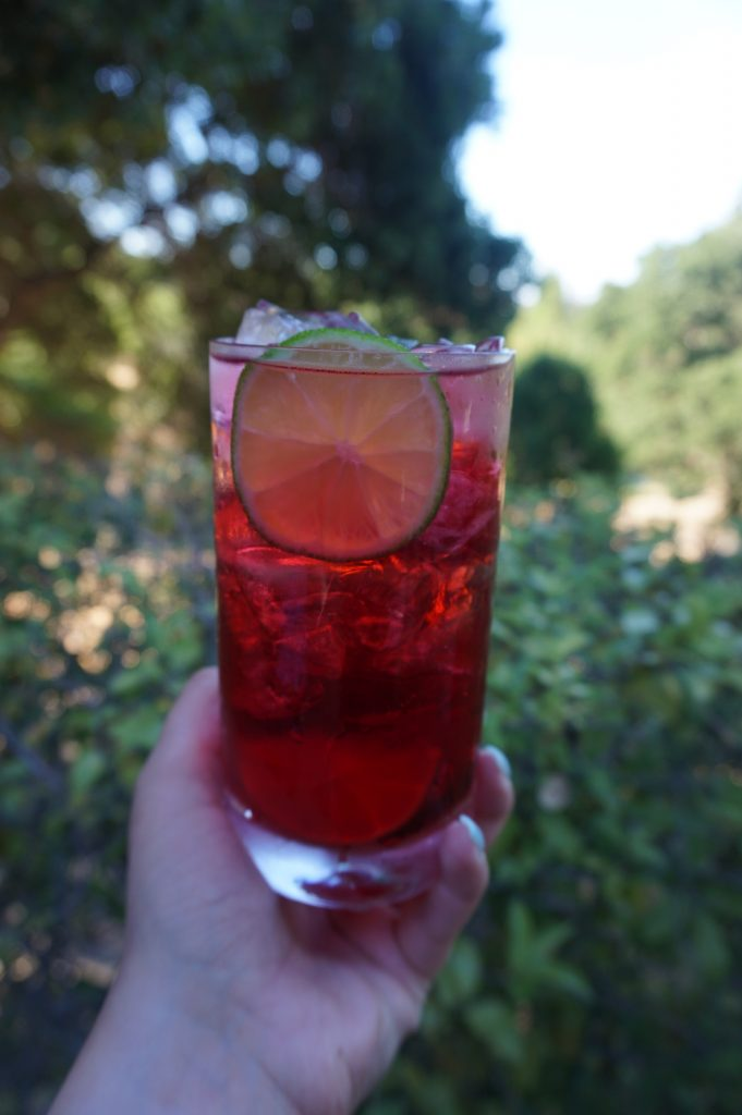 The Long Beach Iced Tea is a refreshing, fruity drink for a hot summer day.