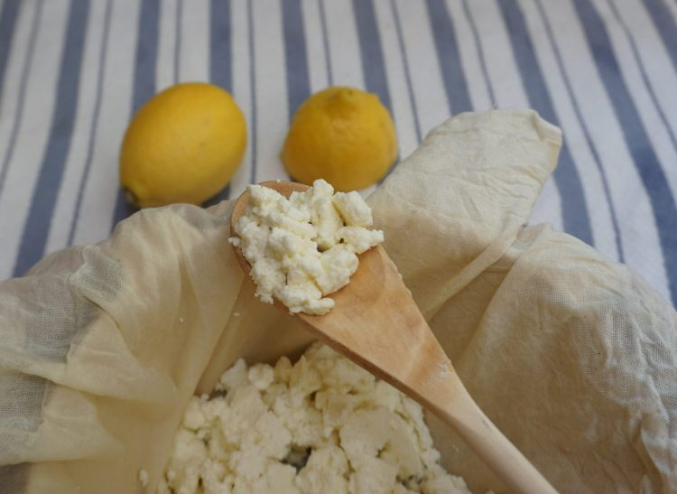 Homemade ricotta is as easy as it is delicious to make!